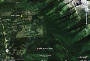 Montana Area Map